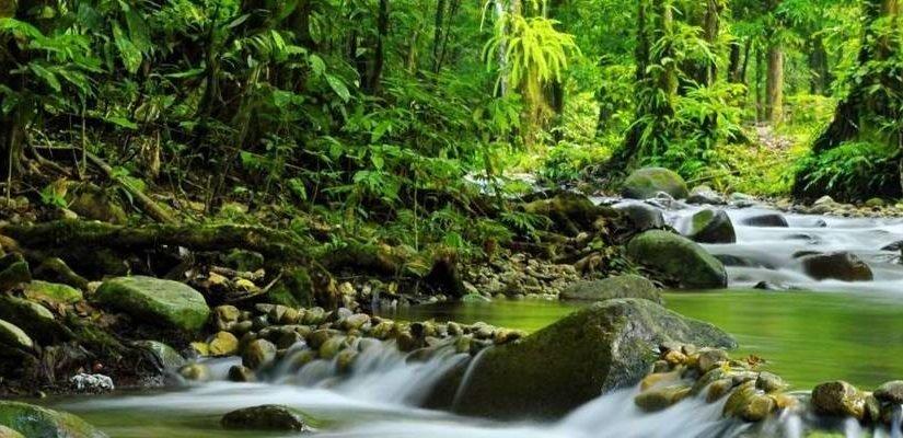 Turismo natural: ¿qué es?